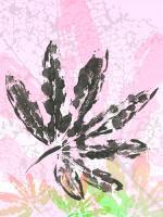 Leaf Study rose III #IG 8098