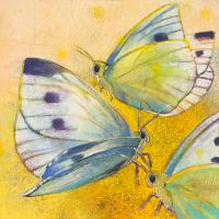 Schmetterlinge #IG 8275